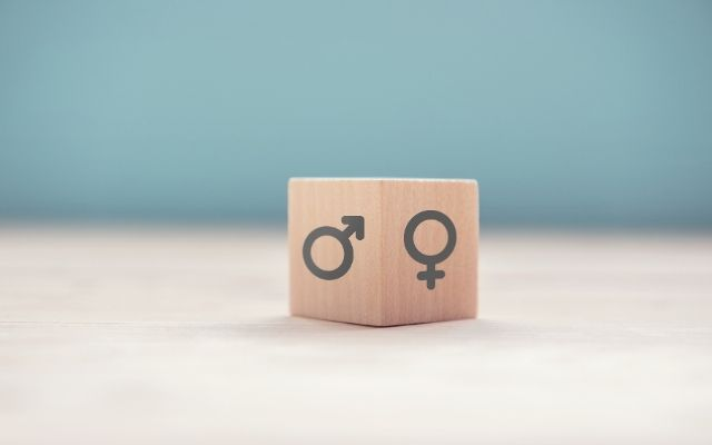 avoid using gendered terms when listing your rental