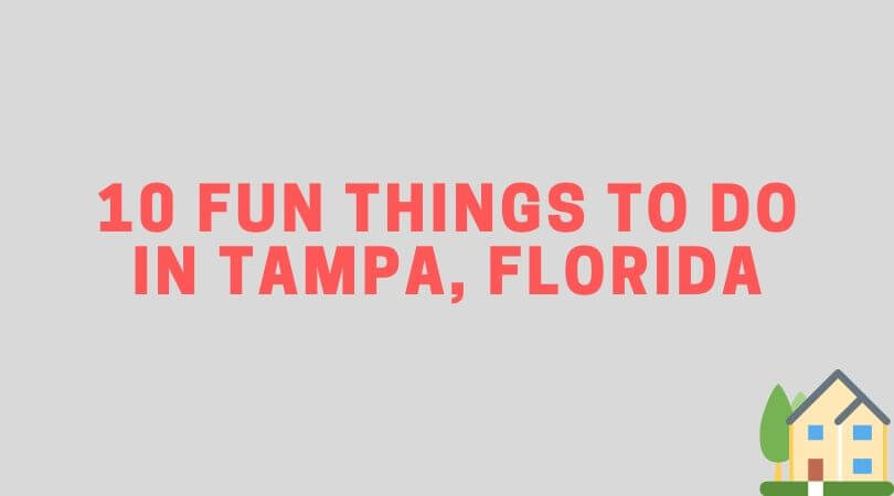 what to do in tampa florida
